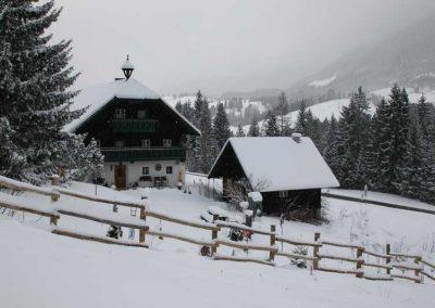 Robinien-Holz Pfähle ohne Rinde in einer Winterlandschaft