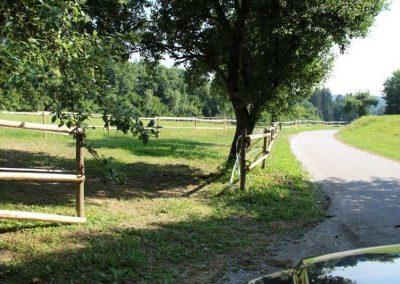 Zaun aus entrindeten Robinien-Holz-Pfählen
