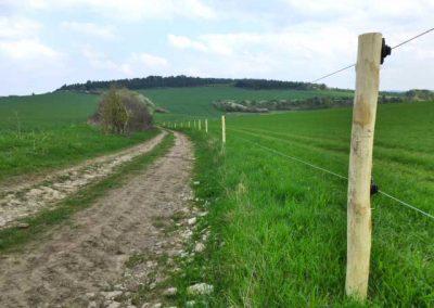 Zaunpfahl aus Robinien-Holz ohne Rinde