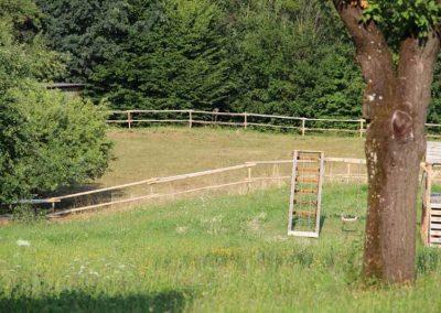Weidezaun aus Robinien-Pfählen für den kleinen Bedarf