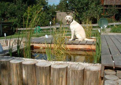 Teich mit Robinien-Rundhölzern ohne Rinde
