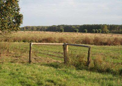 Zaun aus naturbelassenen Robinien-Rundhölzern mit Rinde